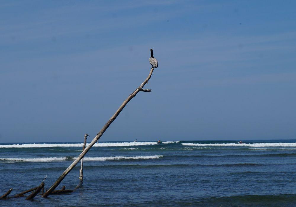 Playa La Saladita