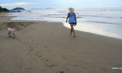 Troncones Playa Troncons
