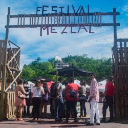 Festival del Mezcal en Zihuatanejo