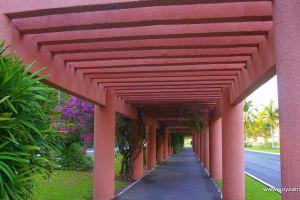 Ixtapa Paseo de los Viveros