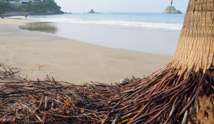 Playa Cucaracha