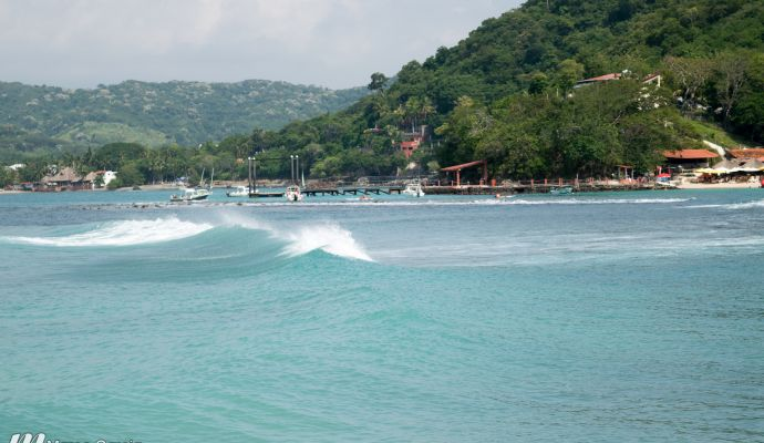 Las Gatas Listos Pa Surfear