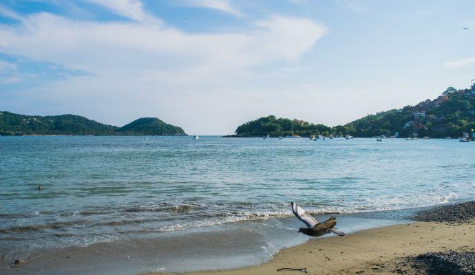 Playa Principal Bahia Ixtapa Zihuatanejo