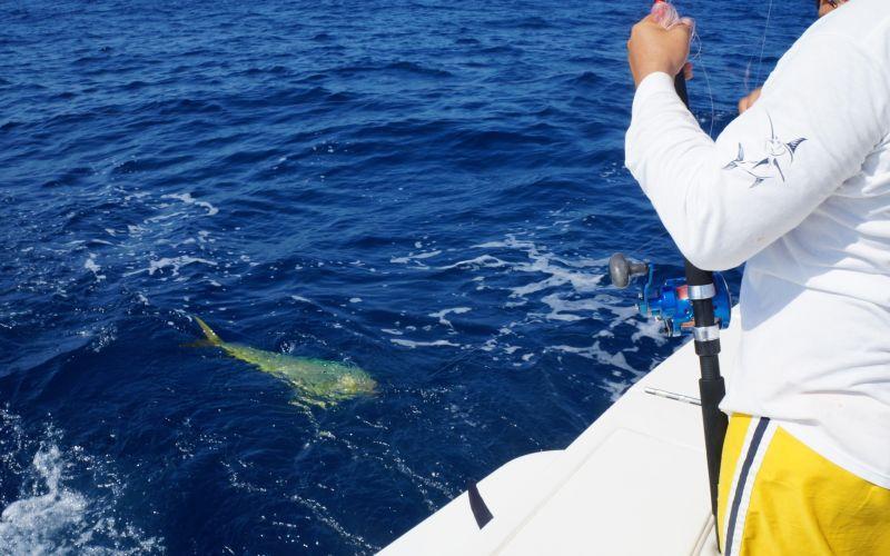 Pesca Zihuatanejo