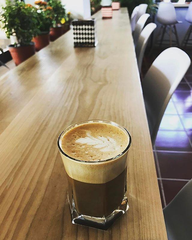 Café la raiz de la tierra